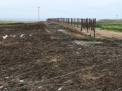 feedlot-l-ranch