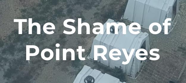 Shame-of-Pt-Reyes.jpeg.png